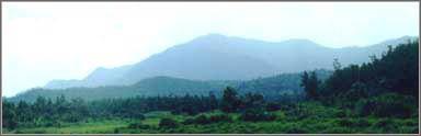 อุทยานแห่งชาติดอยเวียงผา (1)