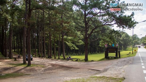 สวนสนบ่อแก้ว - ฮอด (1)