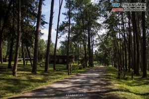 สวนสนบ่อแก้ว - ฮอด (17)