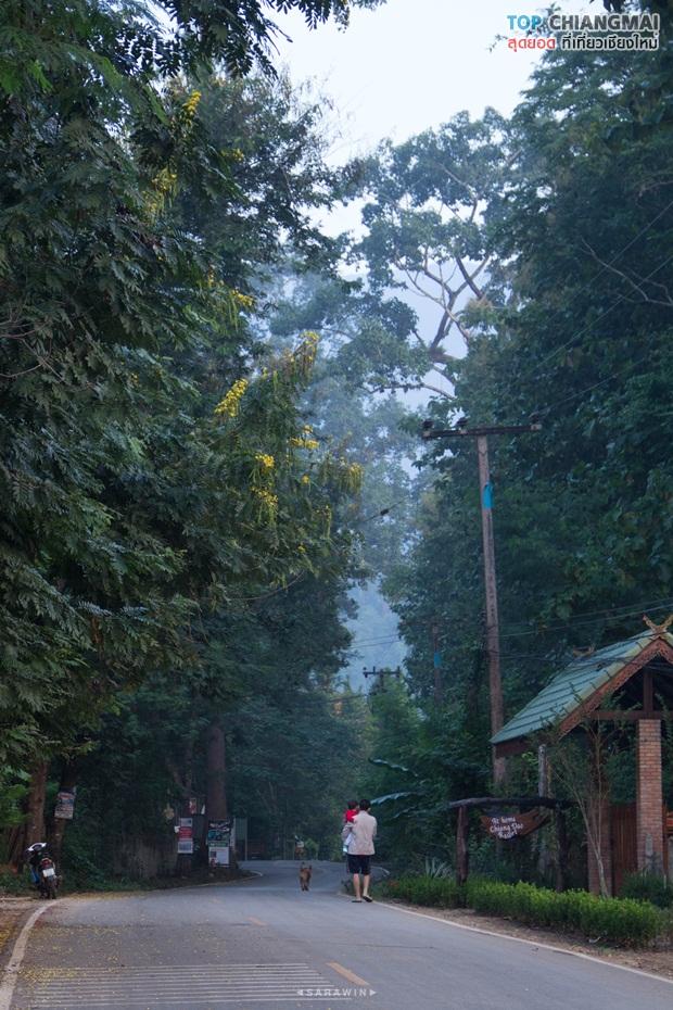 เชียงดาว - หมู่บ้านนาเลาใหม่ -ระเบียงดาว (10)