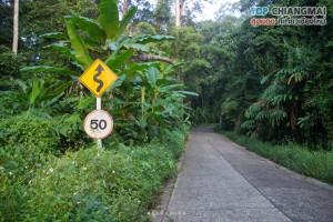 เชียงดาว - หมู่บ้านนาเลาใหม่ -ระเบียงดาว (18)