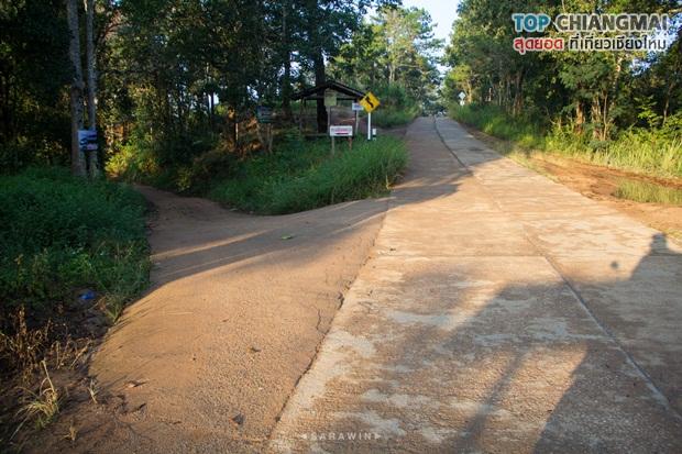 เชียงดาว - หมู่บ้านนาเลาใหม่ -ระเบียงดาว (23)