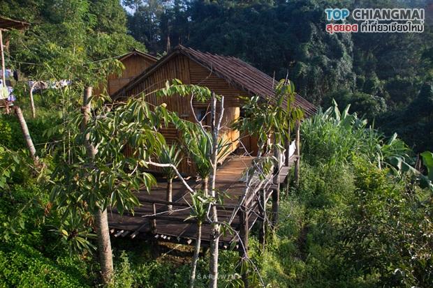 เชียงดาว - หมู่บ้านนาเลาใหม่ -ระเบียงดาว (36)
