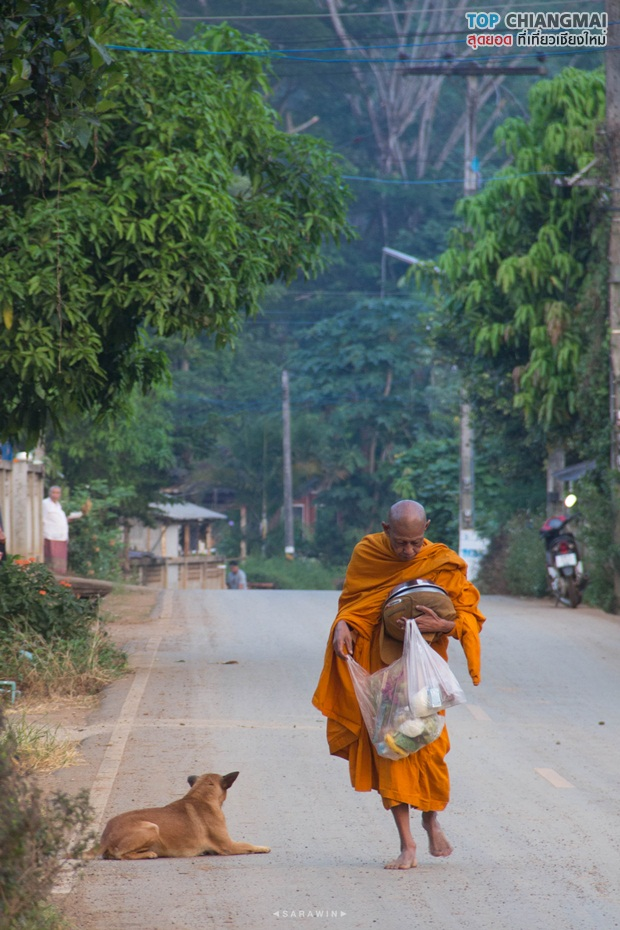 เชียงดาว - หมู่บ้านนาเลาใหม่ -ระเบียงดาว (8)