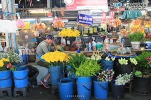 ตลาดประตูเชียงใหม่ (4)
