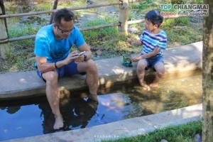 น้ำพุร้อนดอยสะเก็ด - ดอยสะเก็ด (2)
