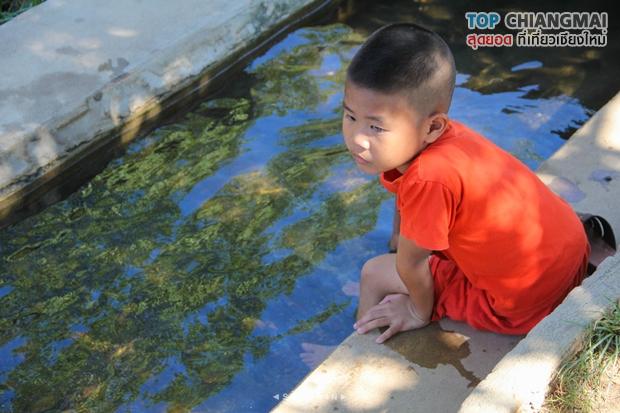 น้ำพุร้อนดอยสะเก็ด - ดอยสะเก็ด (4)