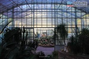 สวนพฤกษศาสตร์ - แม่ริม (40)