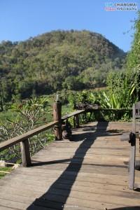 ไร่นภ ภูผา - สะเมิง (25)