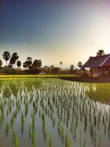 Small Farm Chiang Mai - สมอลล์ฟาร์ม รีสอร์ท (3)