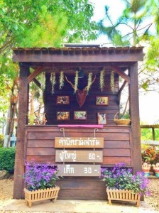 Small Farm Resort (12)