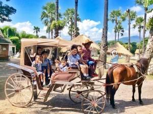 Small Farm Resort (21)