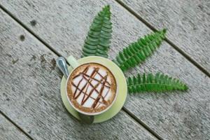 Teddu Coffee Shop - แม่กำปอง (19)