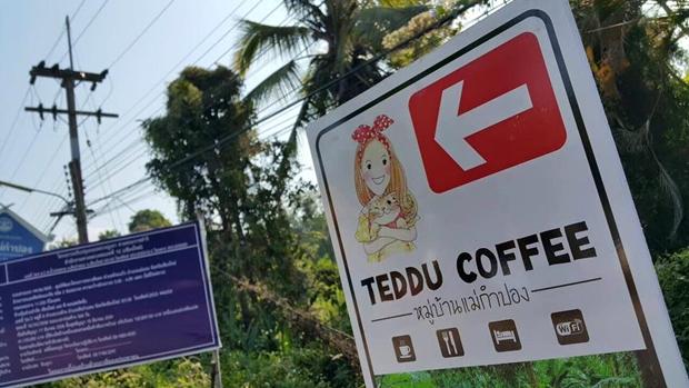 Teddu Coffee Shop - แม่กำปอง (53)