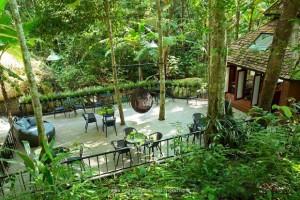 Teddu Coffee Shop - แม่กำปอง (1)