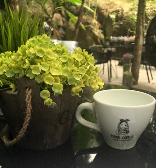 Teddu Coffee Shop - แม่กำปอง (32)
