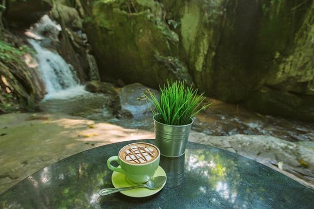 Teddu Coffee Shop - แม่กำปอง (5)