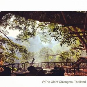 The Giant - แม่ออน (5)