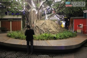 think park (กลางคืน) (28)