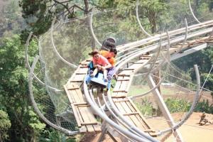 รถไฟรางไม้-Jungle-Coaster-2 (1)