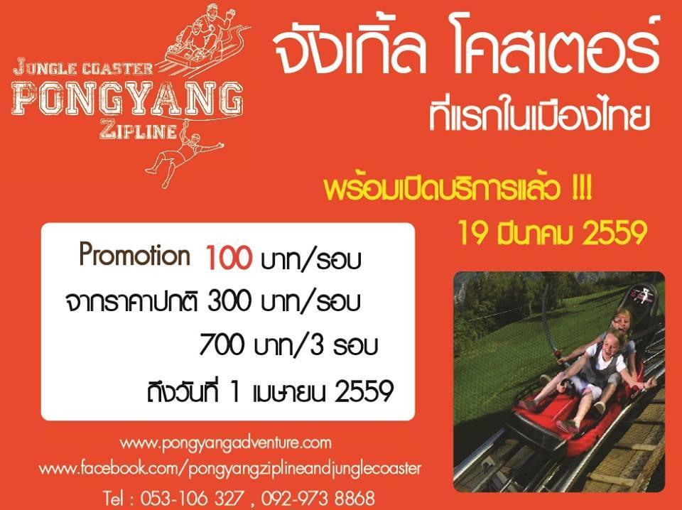 รถไฟรางไม้-Jungle-Coaster-2 (2)