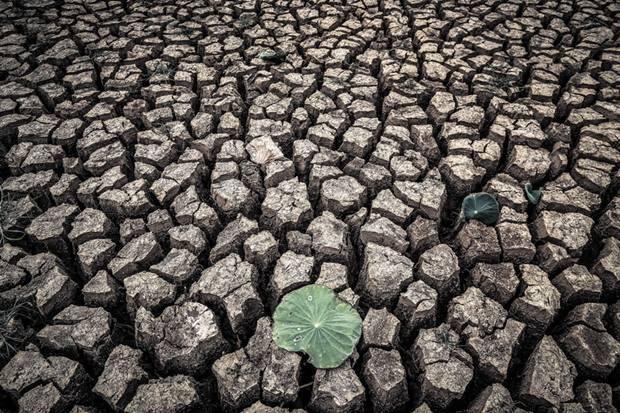 Singha Arsa Drought in Khon Kaen
