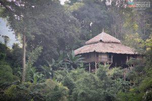 บ้านต้นไม้ แม่แมะ (41)
