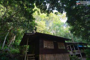 บ้านต้นไม้ แม่แมะ (13)