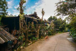 บ้านต้นไม้ แม่แมะ (70)