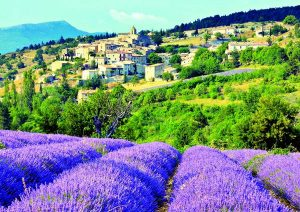 provence_1096487_dt