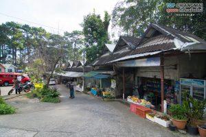Bhuping-palace