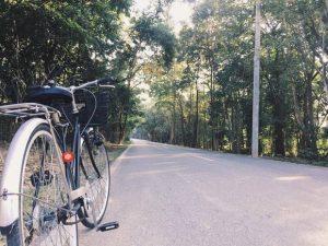 foresta-villa-chiangmai19