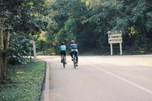 foresta-villa-chiangmai20
