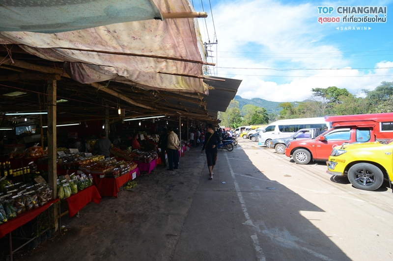 kat-hmong-doi-inthanon-14