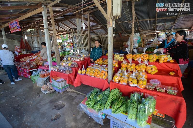 kat-hmong-doi-inthanon-3