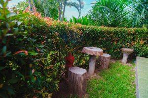 rommai-resort-chiangmai-11