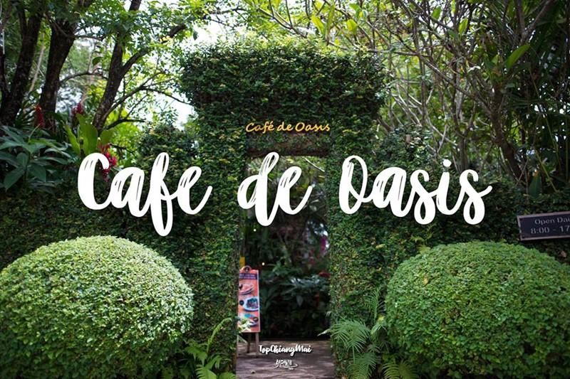 Cafe De Oasis ร้านกาแฟท่ามกลางสวน | Top Chiang Mai สุดยอด ที่เที่ยว ที่กิน  ข้อมูลจังหวัดเชียงใหม่