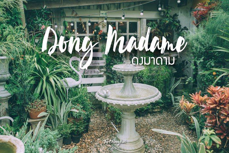 Dong Madame ดงมาดาม   Top Chiang Mai สุดยอด ที่เที่ยว ที่กิน  ข้อมูลจังหวัดเชียงใหม่