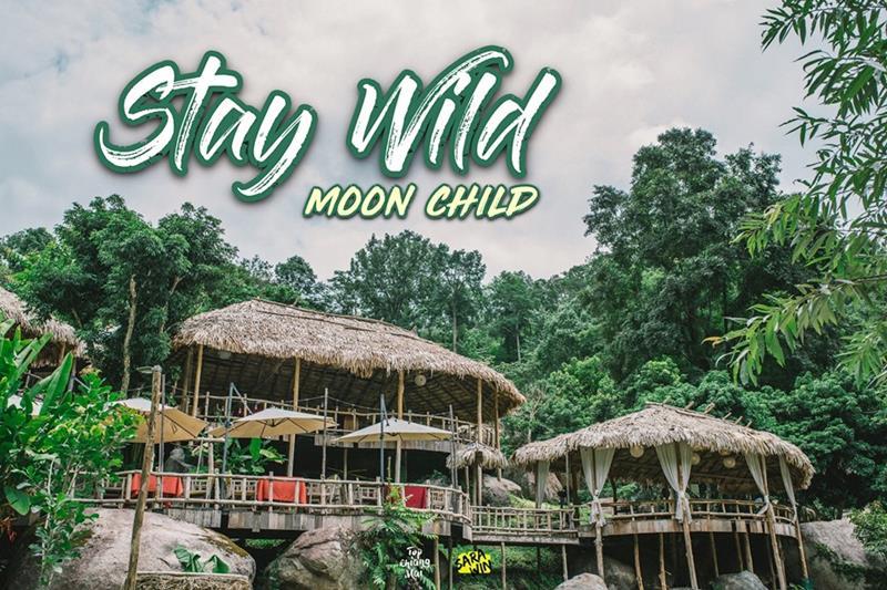 Stay Wild & Café คาเฟ่กลางป่า เพลินตากับสายน้ำ | Top Chiang Mai สุดยอด  ที่เที่ยว ที่กิน ข้อมูลจังหวัดเชียงใหม่